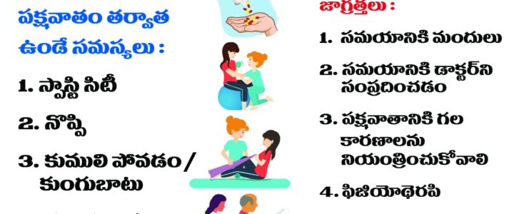 Post Stroke Care Telugu